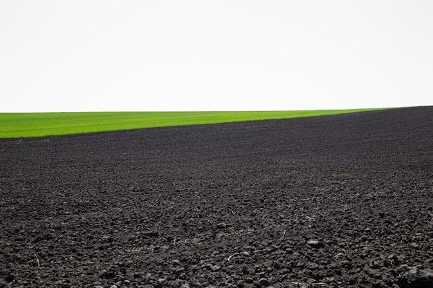 Красивые черноземные поля в украине. сельскохозяйственный сельский пейзаж