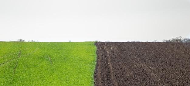 Beautiful black earth fields in ukraine. agricultural rural landscape