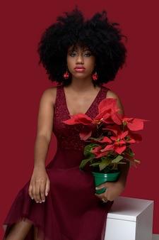彼女の手にポインセチアのフラワーアレンジメントを持って座っている美しい黒人モデルの女の子クリスマスの花