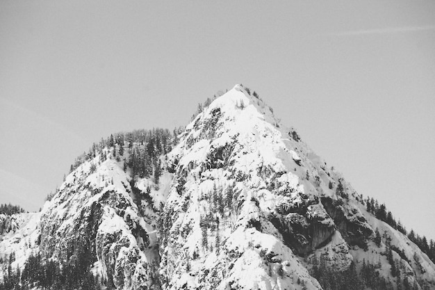 Beautiful black and white shot of snowy high mountains