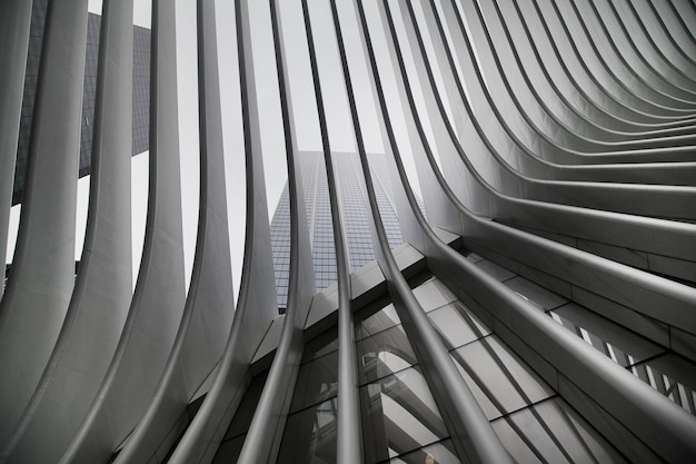 Beautiful black and white upshot of new york city subway's wtc cortlandt station a.k.a. oculus Free Photo