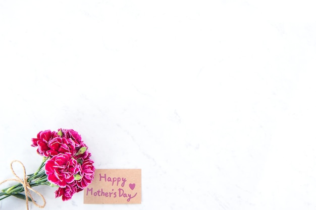 Beautiful blooming carnations tied by bow with kraft text card isolated on bright modern table, copy space, flat lay, top view