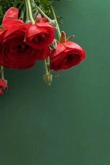 깊은 녹색 배경에 아름 다운 꽃 붉은 꽃, 텍스트를 위한 공간