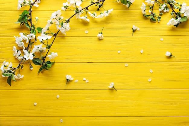 木の色の美しい花の枝と花びら