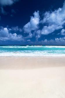美しい青いカリブ海のビーチ