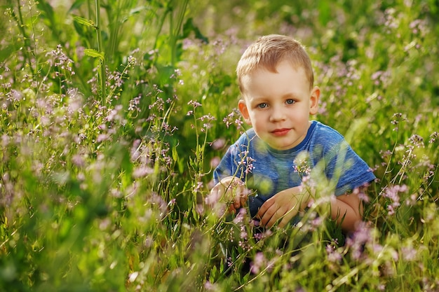 Красивый голубоглазый мальчик прячется в высокой траве на корточках