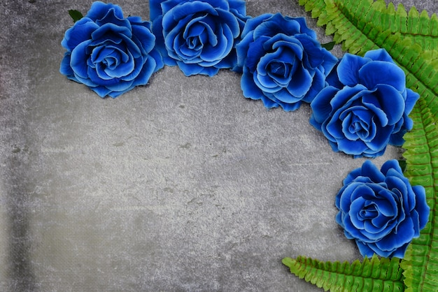 Beautiful blue roses on a background with green leaves for the holiday
