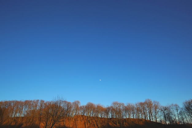 Beautiful blue sky view at evening