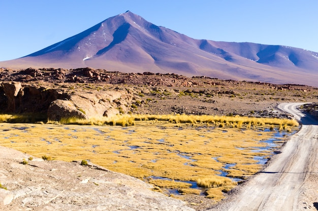 Beautiful bolivian landscape,bolivia. lakes and associated wetlands called bofedales.
