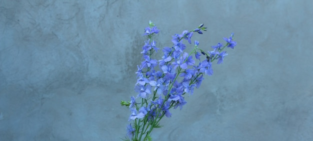 A beautiful bouquet of home flowers  bluepurple delphinium on a gray background space for text copy ...