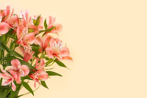 明るい背景にアルストロメリアの花の美しい花束。