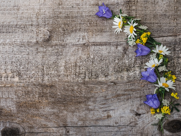 Красивый букет из ярких цветов, вид сверху