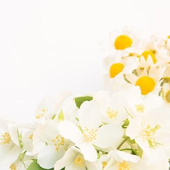 デイジーの美しい花束。