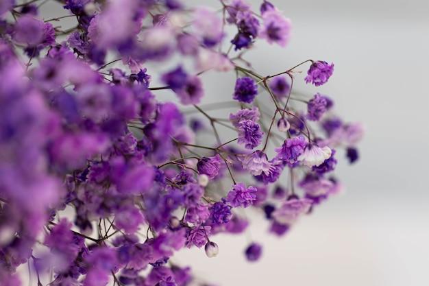 Красивый букет сиреневых цветов на сером