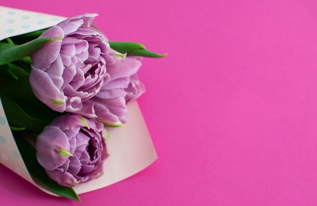 Красивый букет сиреневых весенних тюльпанов на пурпурной поверхности