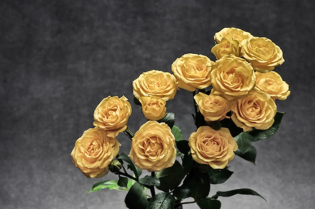 灰色のメランジの背景にバラの美しい花束
