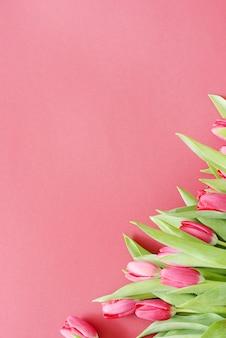 Красивый букет из тюльпанов на розовом фоне