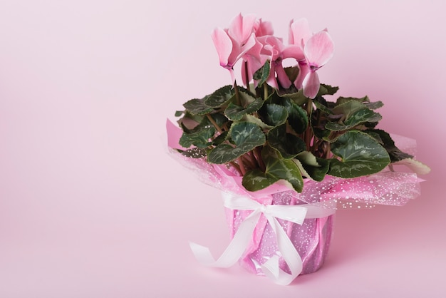 Beautiful bouquet on pink background