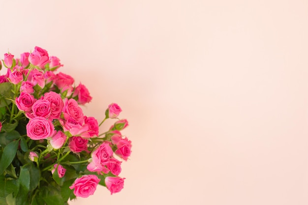 Beautiful bouquet of pink roses on light background
