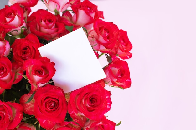 Beautiful bouquet of red roses with a blank gift tag on light background
