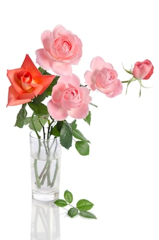 Beautiful bouquet of roses in a glass vase isolated