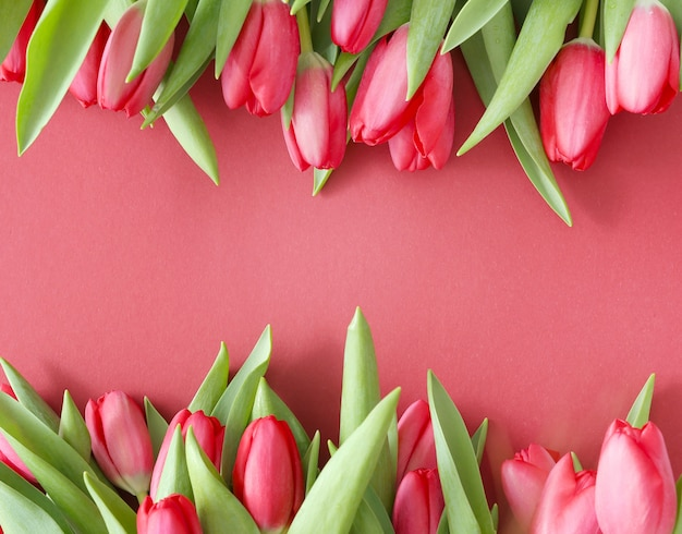 Beautiful bouquet of tulips on pink background