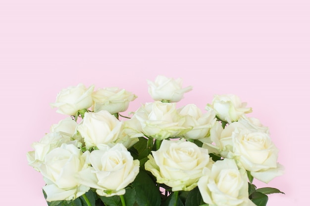 Beautiful bouquet of white roses on pink background