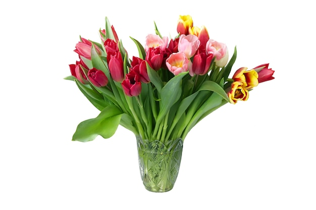 Beautiful bouquet with multicolored tulips in vase isolated