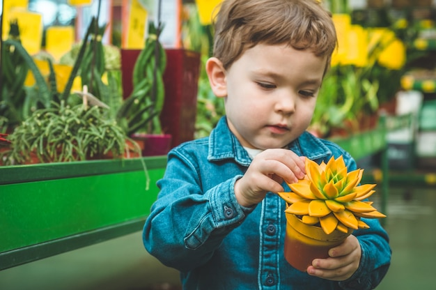 小売店で植物の多肉植物と遊ぶ美しい少年。温室でのガーデニング。植物園、花の栽培、園芸産業のコンセプト