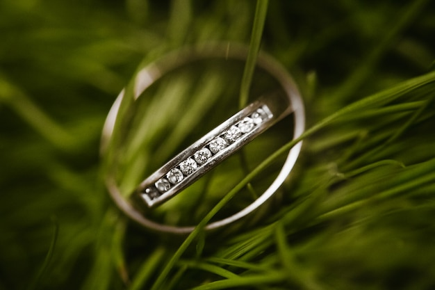 Beautiful bridal wedding rings in the grass