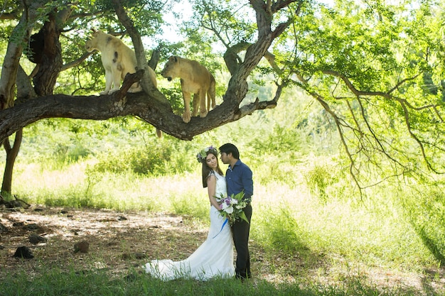 Beautiful bride and groom with two lionesses in nature
