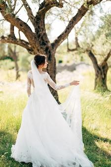 올리브 과수원에서 긴 신부 베일과 부드러운 웨딩 드레스의 아름다운 신부