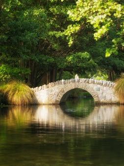 Красивый мост в ботаническом саду