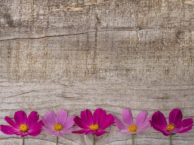 Beautiful bright flowers lying on wooden surface