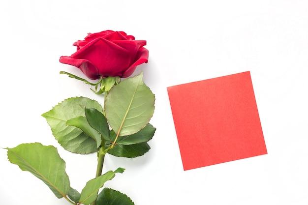 あなたのテキストのための赤いステッカーが付いている美しい明るい赤いバラ。バレンタインデー。愛のシンボル。