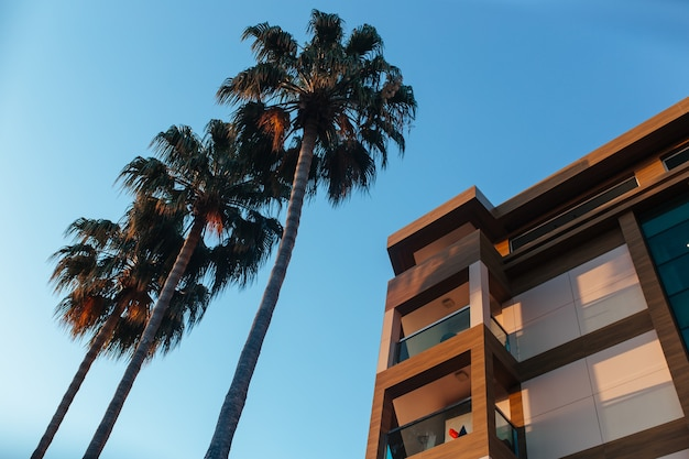 Beautiful building and palm trees against the sky