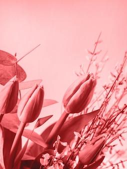 Beautiful bunch of tulips on pastel