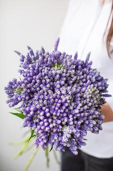 Красивый куст вероники на разноцветных бумажных фонах с копией пространства. весна, лето, цветы, цветовая концепция. доставка цветов
