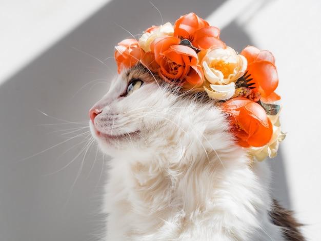 彼の頭に花輪を捧げる美しい三毛猫。彼女の頭の上の花ダイアデムのかわいい子猫は太陽の下に座って目をそらします