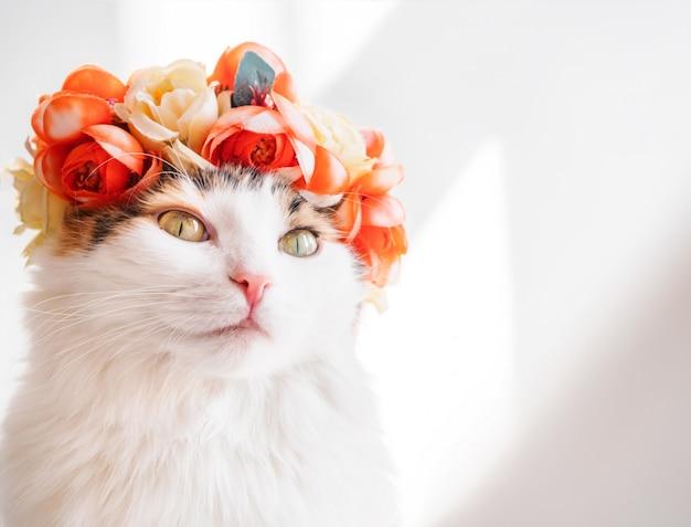 그의 머리에 화 환을 가진 아름 다운 얼룩 고양이. 그녀의 머리에 꽃 왕관에 귀여운 키티는 태양에 앉아 멀리 보인다