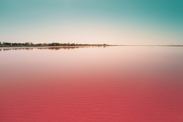 Beautiful calm pink lake under the blue sky captured in camarque, france