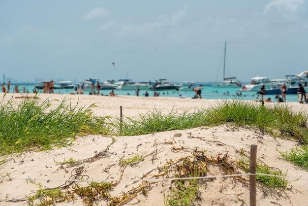 メキシコのカンクン近くのムヘレス島にある美しいカリブ海のビーチプラヤノルテまたはノースビーチ