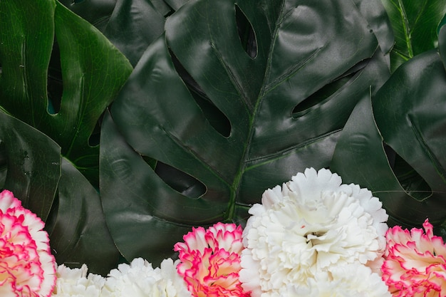 Beautiful carnation flowers and tropical leaves