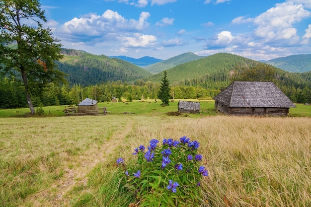 Beautiful carpathian mountains landscape. with a view to traditional wooden house.