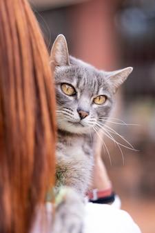 정원에서 주인이 안고 앞을 바라보는 아름다운 고양이.