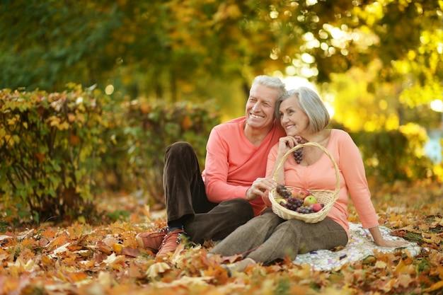 Красивая кавказская пожилая пара в парке осенью
