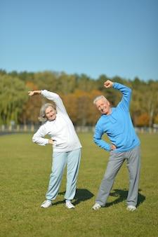 秋の公園で美しい白人老夫婦trainig