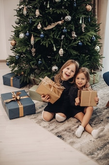 Beautiful caucasian sisters laughs with a boxes with girts in their hands