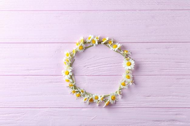 色の美しいカモミールの花