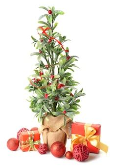 白のヤドリギ植物と美しいクリスマスの構成